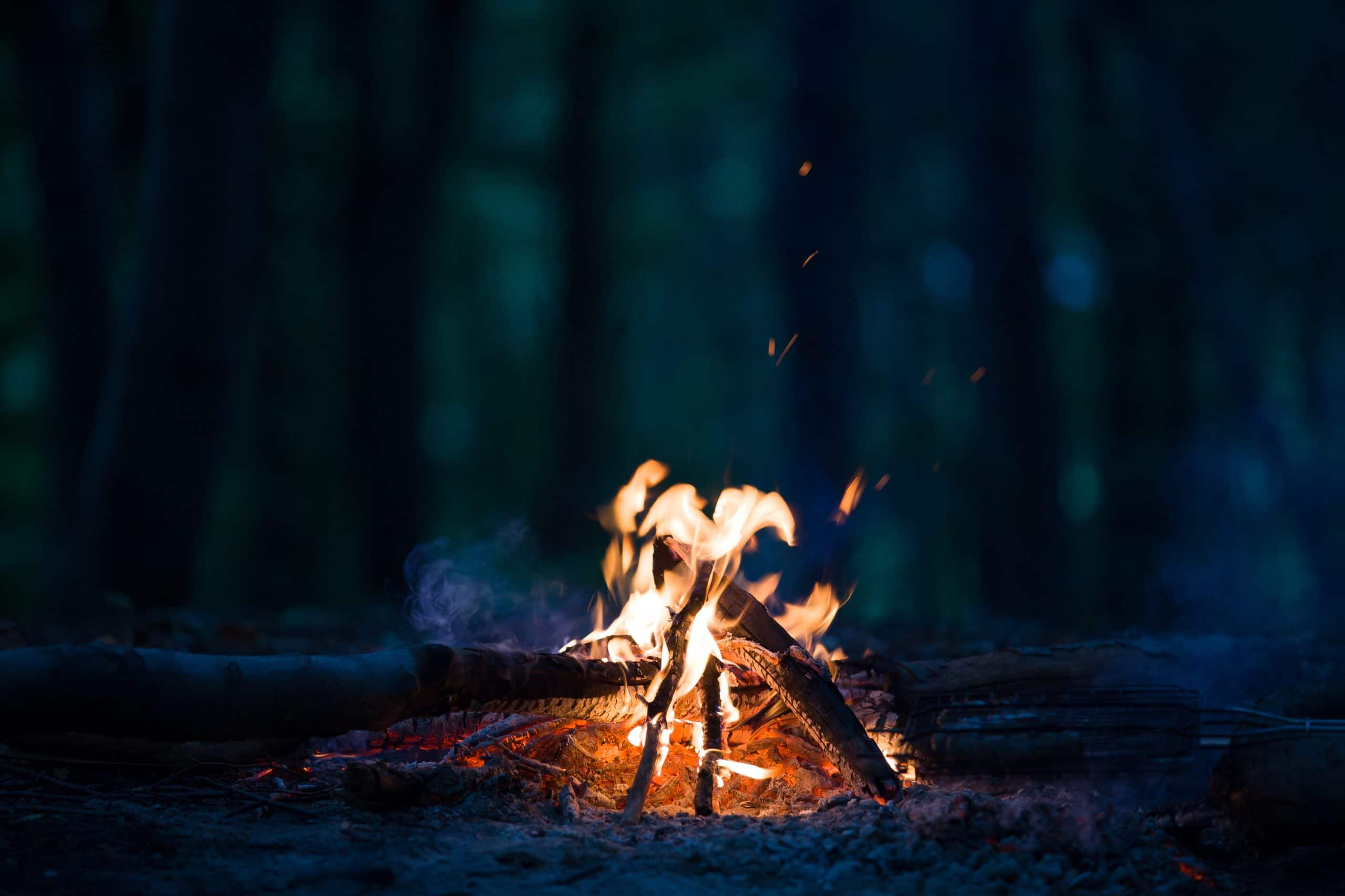 Night campfire at the night with blurred dark fores.