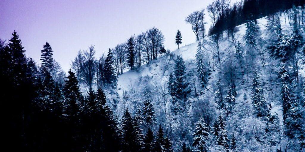 Raunaechte Hintergrund Winter